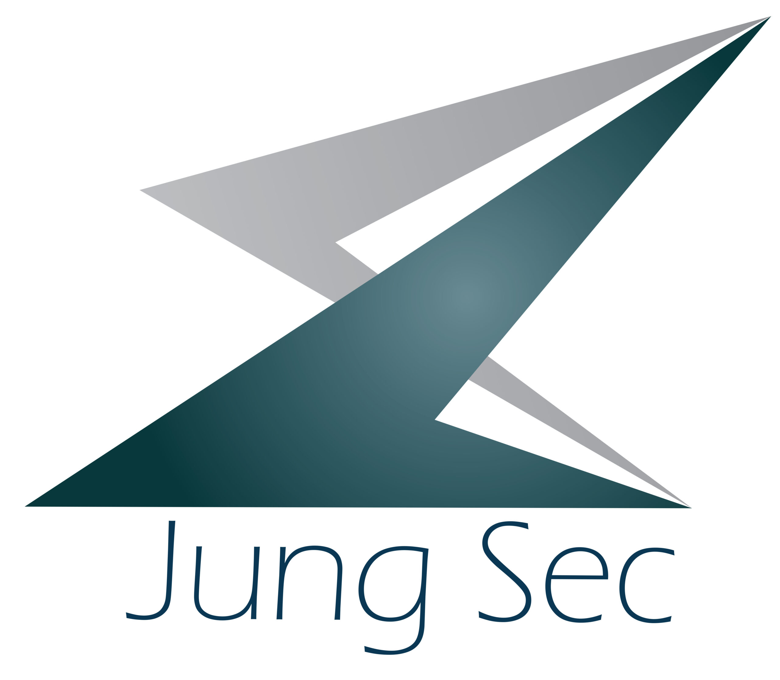 Jung Security